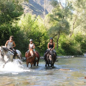 Alta Ruta Aventura ofereix excursions a cavall