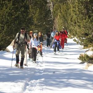 Excursions amb raquetes de neu