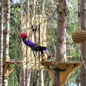 bosc-vertical-pallars