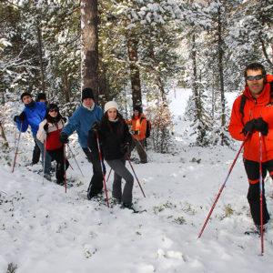 actividad-raquetas-nieve-pallars